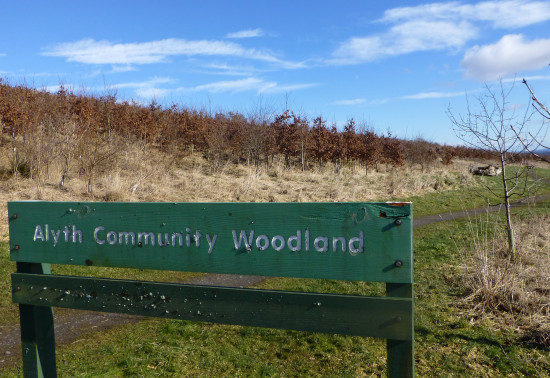 Alyth Wood sign