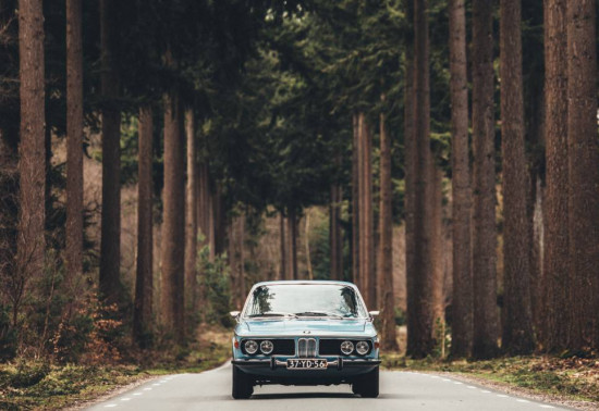 Vintage car driving along a tree-lined road