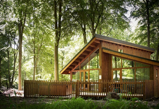 Investing and growing the visitor footfall and the profile of the National Forest Estate
