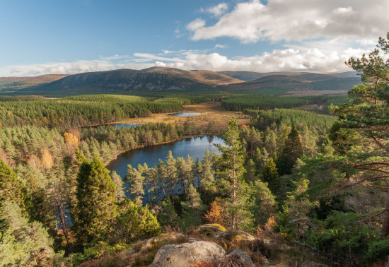 View of lochans, forest and mountains taken from a hilltop