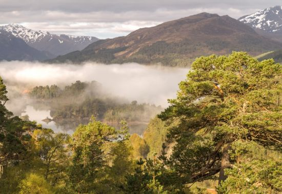 Mountains, trees, a loch and low clouds in Glen Affric