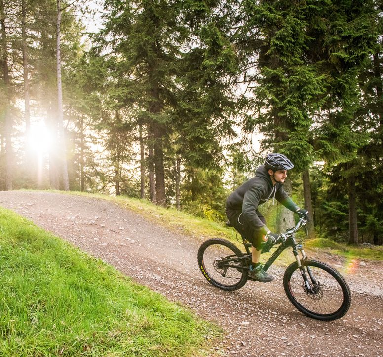Man riding a mountain bike along a forest trail