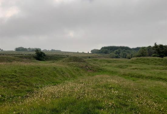 View of uneven land at site