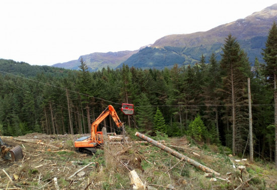Harvesting operations in the forest at Wades Bridge using a cable crane and excavator
