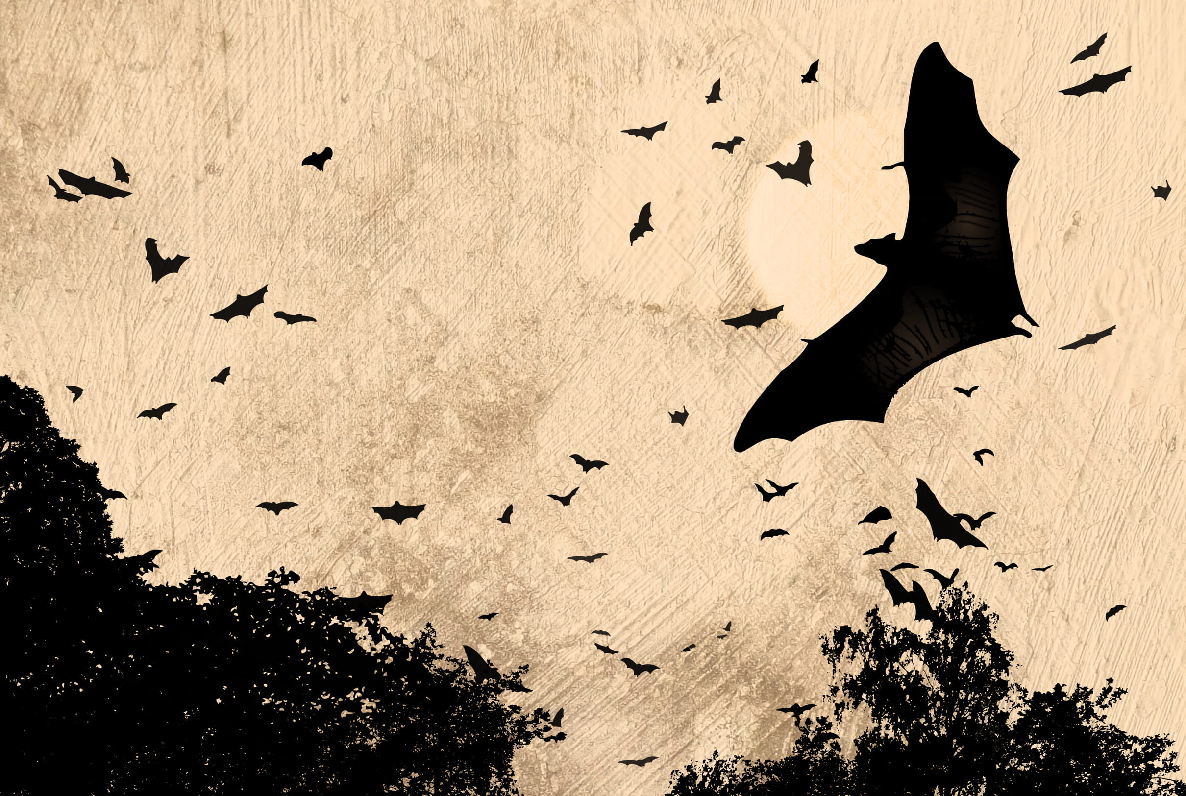 Illustration - bats flying
