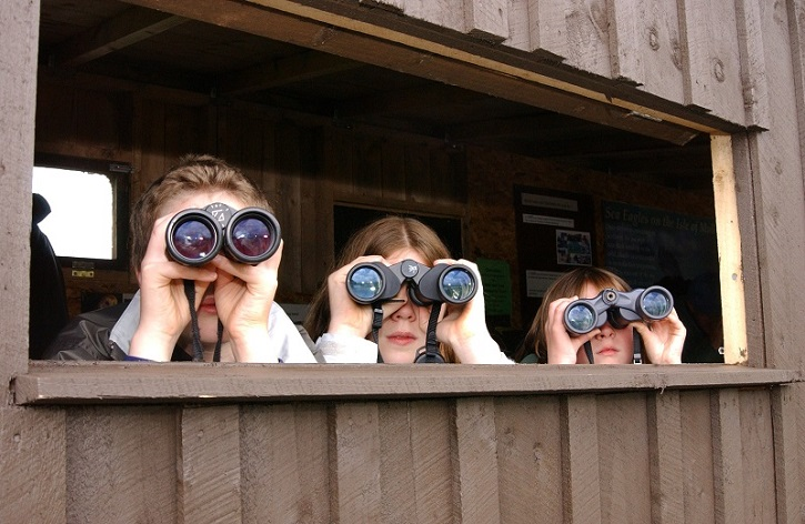 Three people looking out through binoculars from a wooden shelter