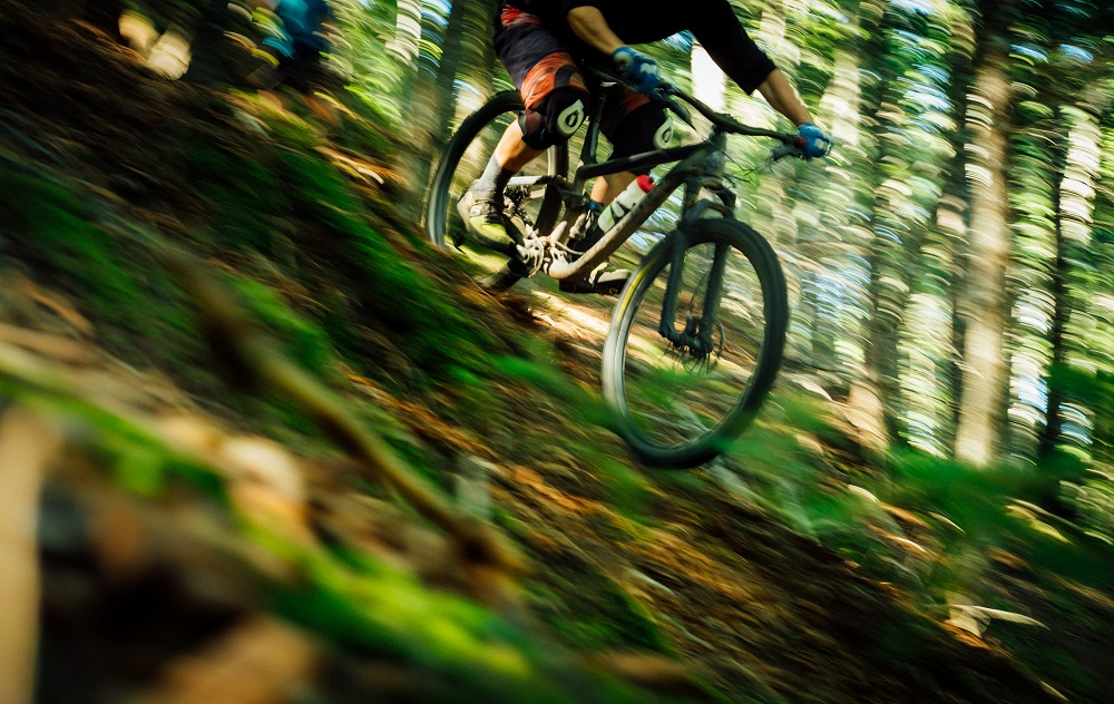 Person mountain biking down an off-road slope within a bright forest