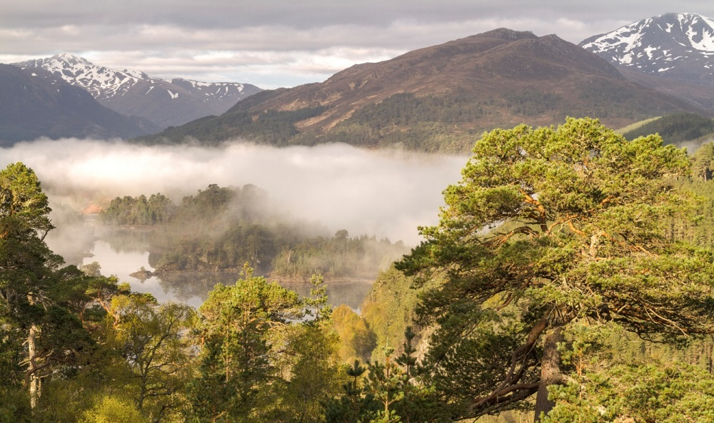 Mountains, trees, a loch and low clouds at Glen Affric