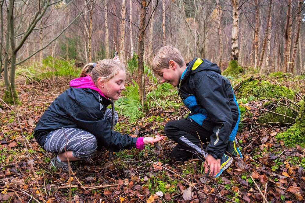 Two children looking at lichen on a forest floor