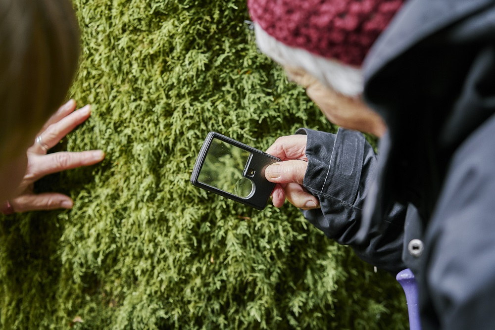 Two people looking at lichen with a magnifying glass
