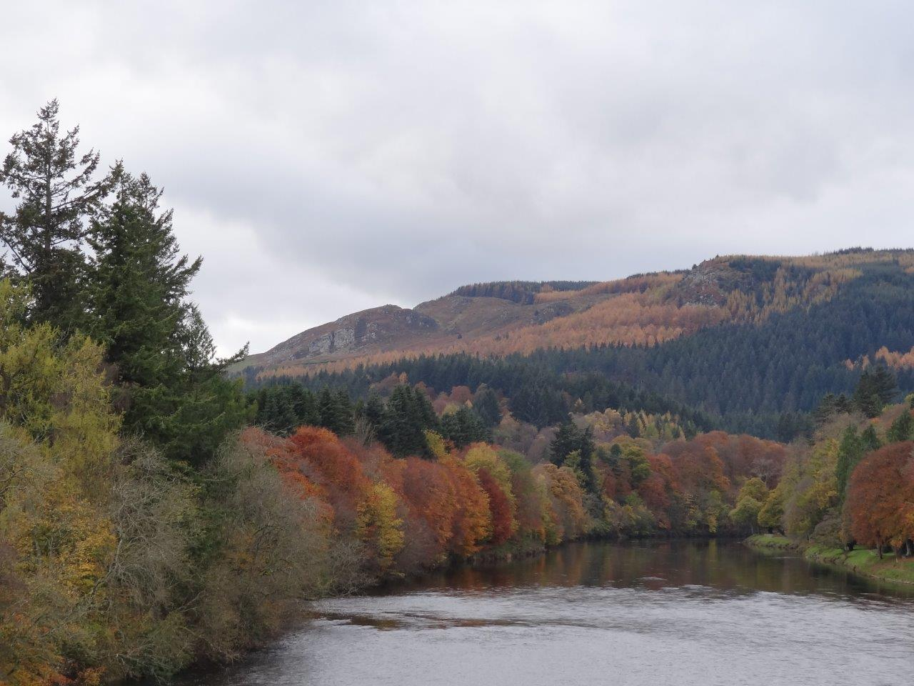 View of autumnal trees on banks of the River Tay