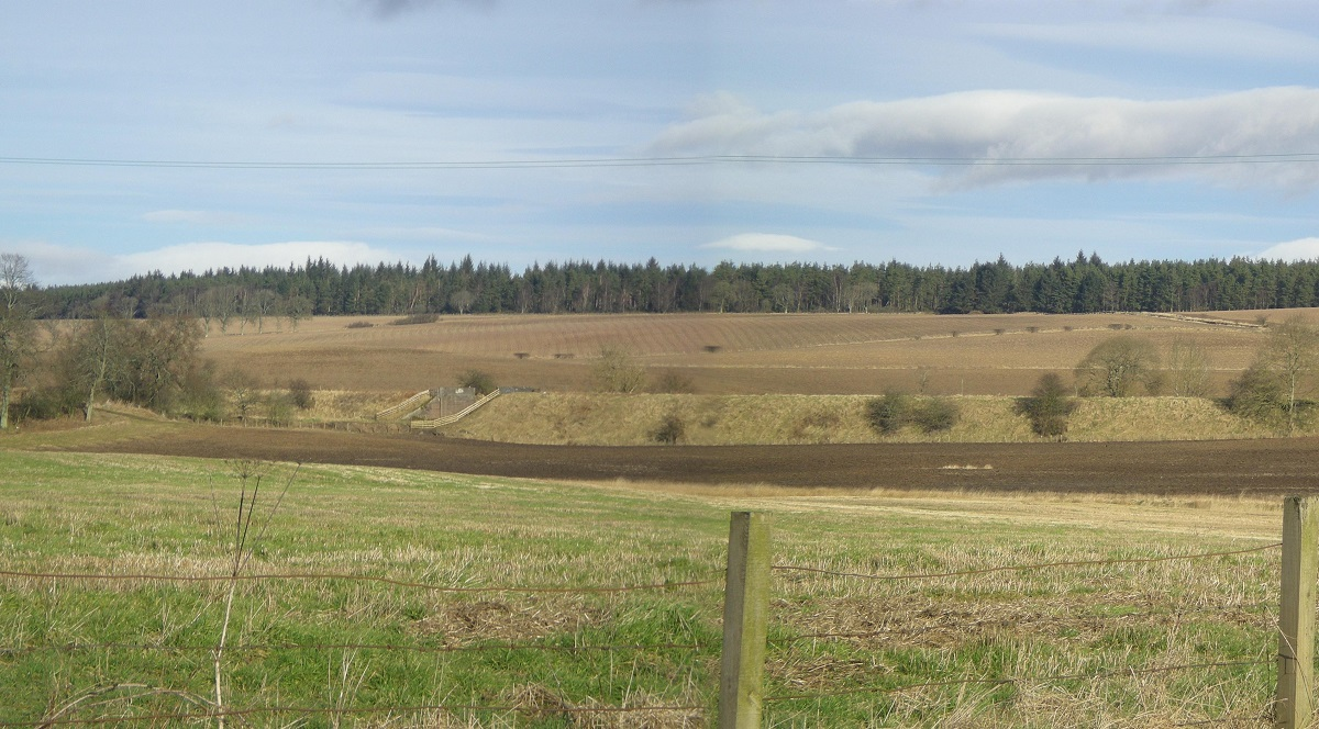 View across fields to a forest