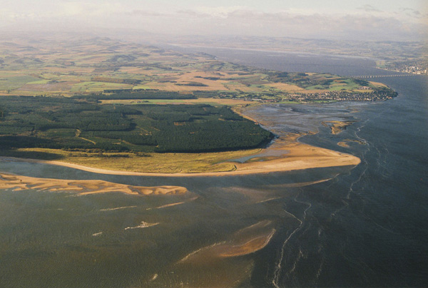 Aerial view of Tentsmuir forest and beach and the River Tay
