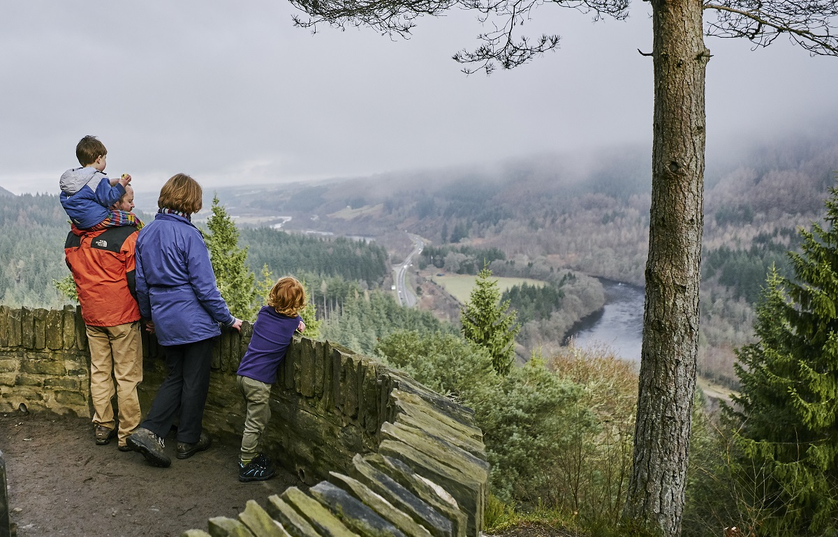 A family of four looking down at a forested glen from a hillside viewpoint at Craigvinean