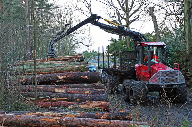 A forest forwarder machine picking up a log from a pile using an articulated mechanical arm, on a forest road