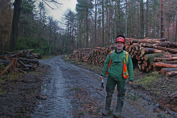 A man in green jumper and hi-vis vest standing on a damp forest road with felled logs piled behind
