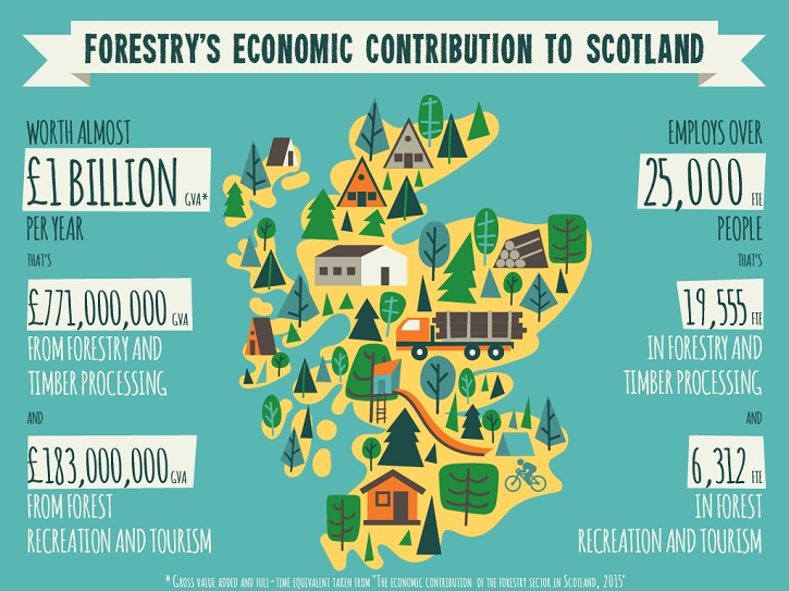 Digital infographic showing some facts and figures regarding Scottish Forestry