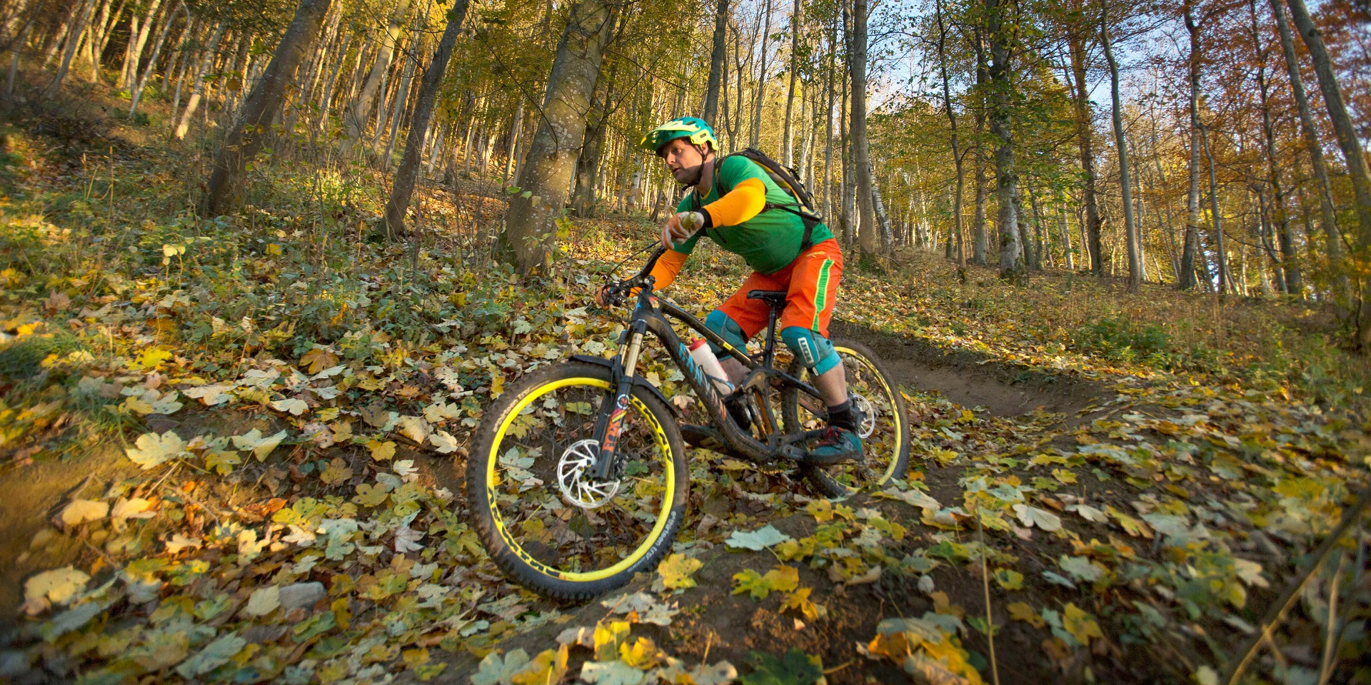 A cyclist biking down a mountain bike trail in a woodland