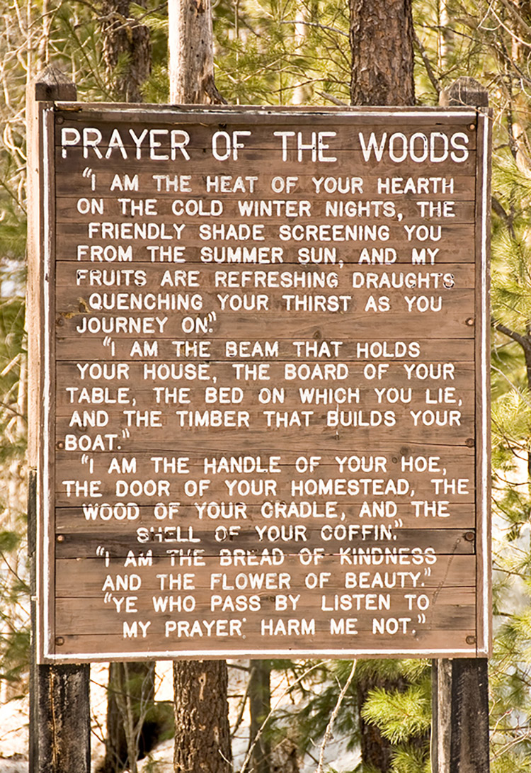 prayerofthewoods cdawley ccommons2 0 final1