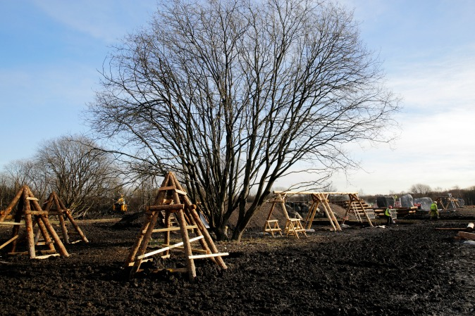 Large bare winter tree with outdoor wooden play equipment around