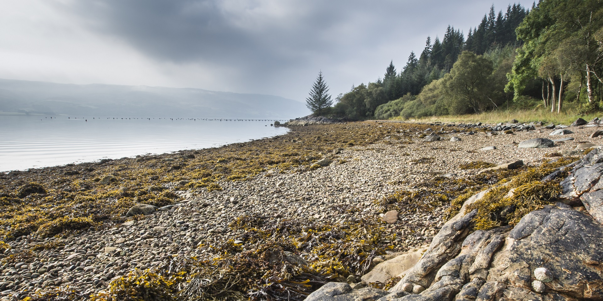 The pebble beach at Ardcastle