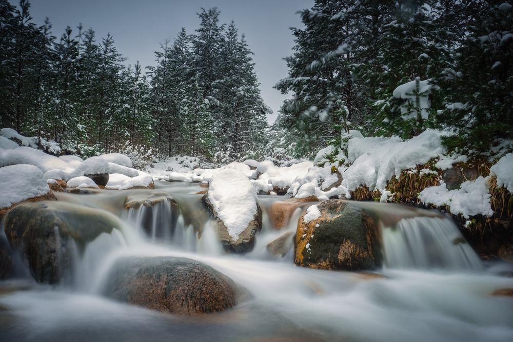 Snowy rocks in middle of flowing river with trees behind