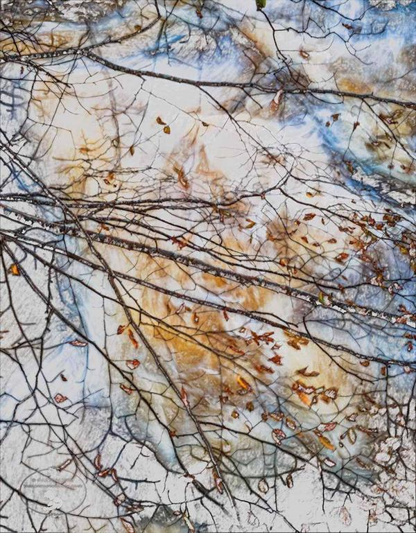 aros burn martin jones autumn