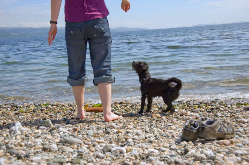 Human and black dog about to go paddling at a beach