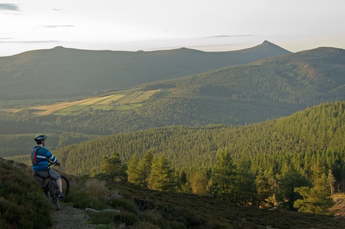 A mountain biker looking over vast forests towards the hilltop of Bennachie