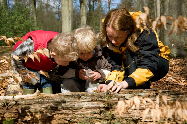 two children and adult look at log for insects