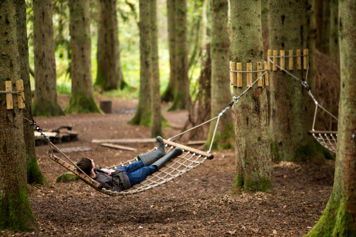 Person in a hammock strung up between two trees