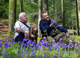Two men sitting with dogs behind bluebells