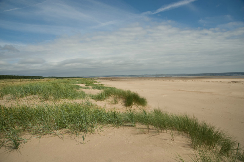 the beach at Tentsmuir